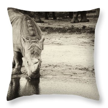 Two White Rhinos  Throw Pillow