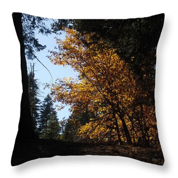Throw Pillow featuring the photograph Untitled by Kristen R Kennedy