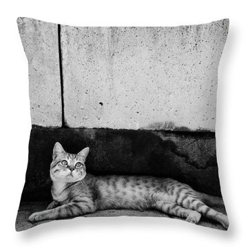Throw Pillow featuring the photograph Untitled by Laura Melis