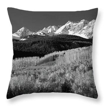 Usa, Colorado, Rocky Mountains, Aspens Throw Pillow