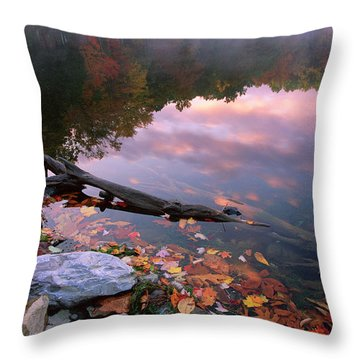 Poconos Throw Pillows