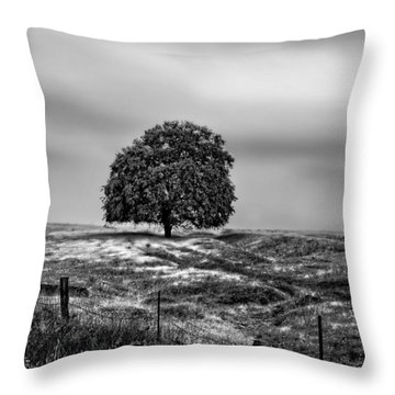 Valley Oak Majesty Throw Pillow