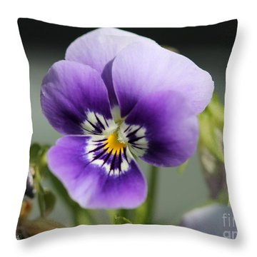 Viola Named Sorbet Marina Baby Face Throw Pillow by J McCombie