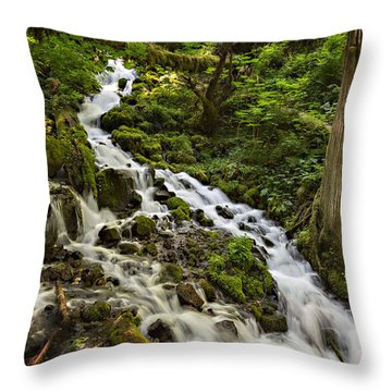 Wahkeena Creek Throw Pillow by Mary Jo Allen