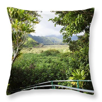 Wailua Valley State Wayside Throw Pillow by Jenna Szerlag