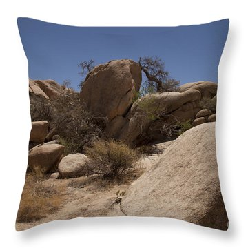 Waiting Throw Pillow by Amanda Barcon