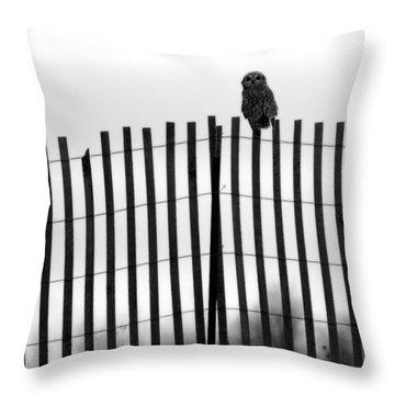 Waiting Owl Throw Pillow