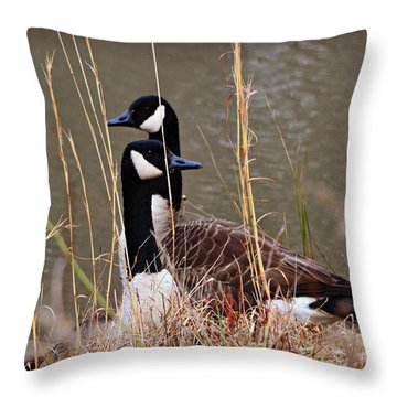 Watchful Throw Pillow by Mary Zeman