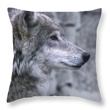 Watching And Waiting Throw Pillow by Sandra Bronstein