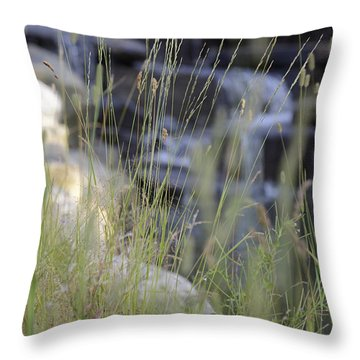 Water Is Life 2 Throw Pillow