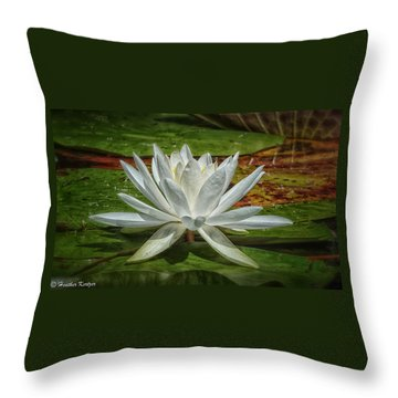Water Lily Throw Pillow by Heather Kertzer