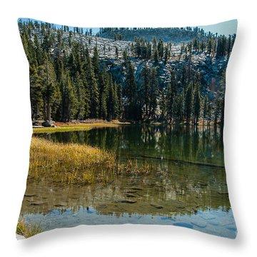 Weaver Lake- 1-7686 Throw Pillow