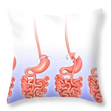 Three Dimensional Throw Pillows