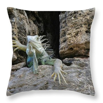 Welcome Friends Throw Pillow
