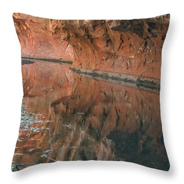 West Fork Reflection Throw Pillow