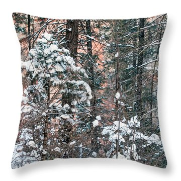 West Fork Snow Throw Pillow