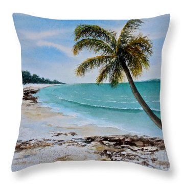 Throw Pillow featuring the painting West Of Zanzibar by Sher Nasser