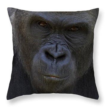 Western Lowland Gorilla Portrait Throw Pillow by San Diego Zoo