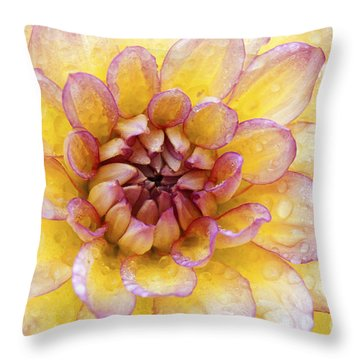 Wet Dahlia Throw Pillow by Paul W Faust -  Impressions of Light