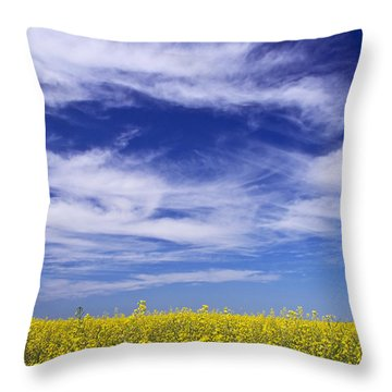 Where Land Meets Sky Throw Pillow by Keith Armstrong