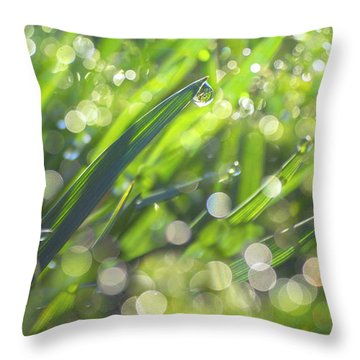 Where The Fairies Are Throw Pillow by Rima Biswas