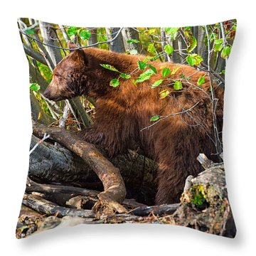 Where The Wild Things Are Throw Pillow by Scott Warner