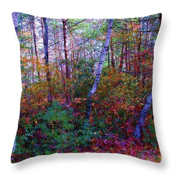 White Birch - Pocono Mountains Throw Pillow