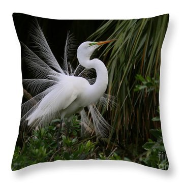 Throw Pillow featuring the photograph White Egret Displaying by Myrna Bradshaw