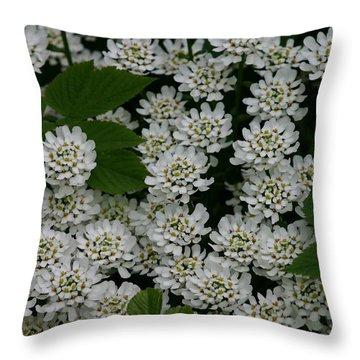 Throw Pillow featuring the photograph White Flowers by Susanne Baumann