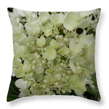 White Hydrangea Throw Pillow