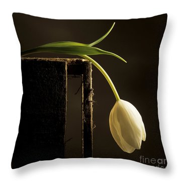 White Tulip Throw Pillow by Bernard Jaubert