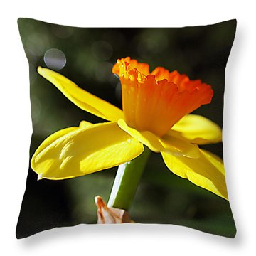 Throw Pillow featuring the photograph Wide Open by Joe Schofield