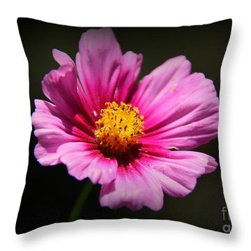 Wildflower Throw Pillow by Lisa L Silva