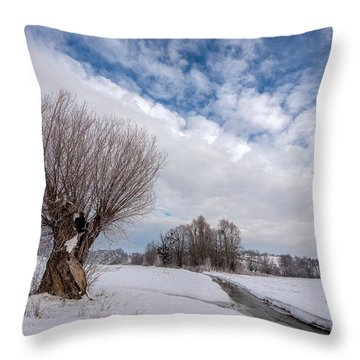 Throw Pillow featuring the photograph Willow by Davorin Mance