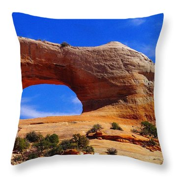 Wilsons Arch Throw Pillow by Jeff Swan