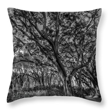 Wind Swept Trees Throw Pillow