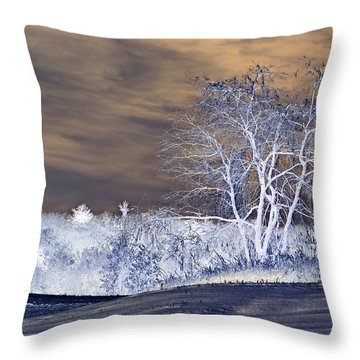 Winter Blues Throw Pillow by Susan Leggett