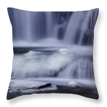 Winter Fall Throw Pillow
