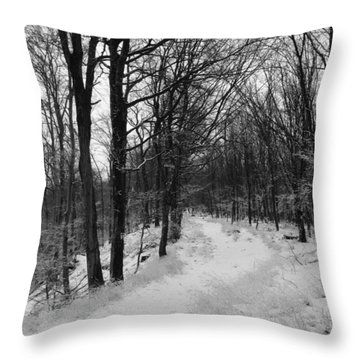 Winter Forest Throw Pillow by Eva Csilla Horvath