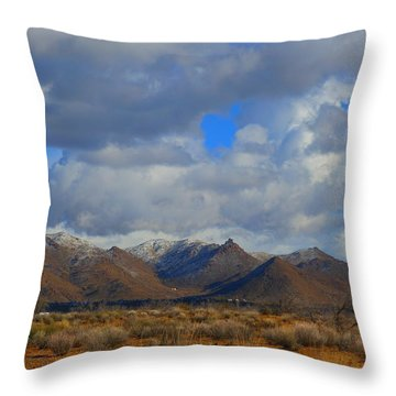 Winter In Golden Valley Throw Pillow