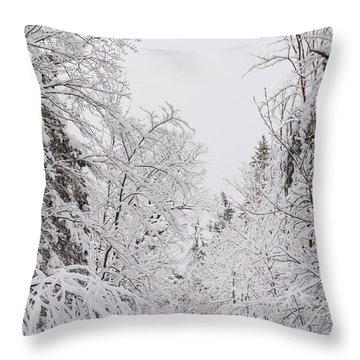 Winter Road Throw Pillow by Cheryl Baxter
