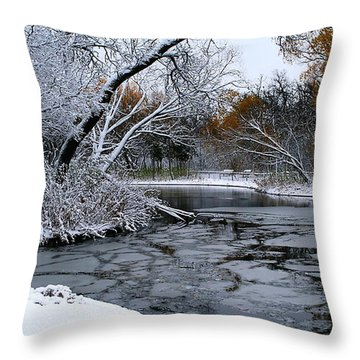 Throw Pillow featuring the photograph Winter Wonderland by Larry Trupp