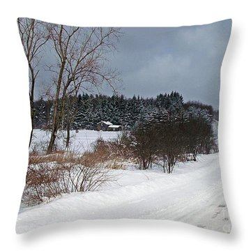 Throw Pillow featuring the photograph Winters Refuge by Christian Mattison