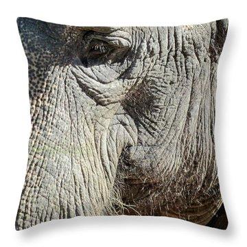 Wise One,elephant  Throw Pillow