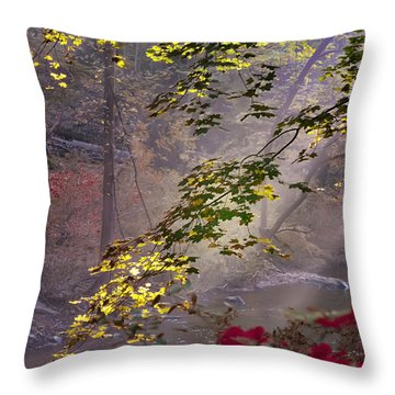 Wissahickon Autumn Throw Pillow by Bill Cannon