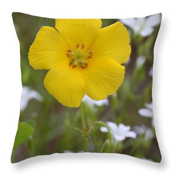 Wood Sorrel And Sandwort Throw Pillow