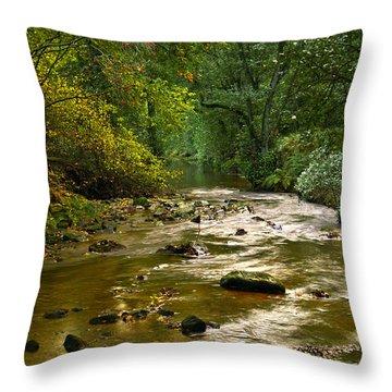 Woodland Stream In Autumn Throw Pillow
