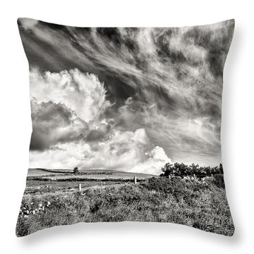 Written In The Wind Throw Pillow by William Beuther