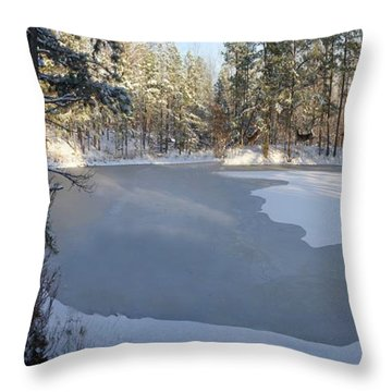 Yeshua Is Coming Throw Pillow by Bill Stephens