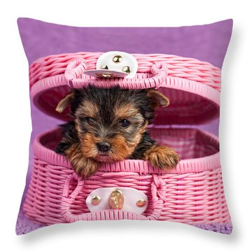 Yorkshire Terrier Puppy Throw Pillow by Marta Holka